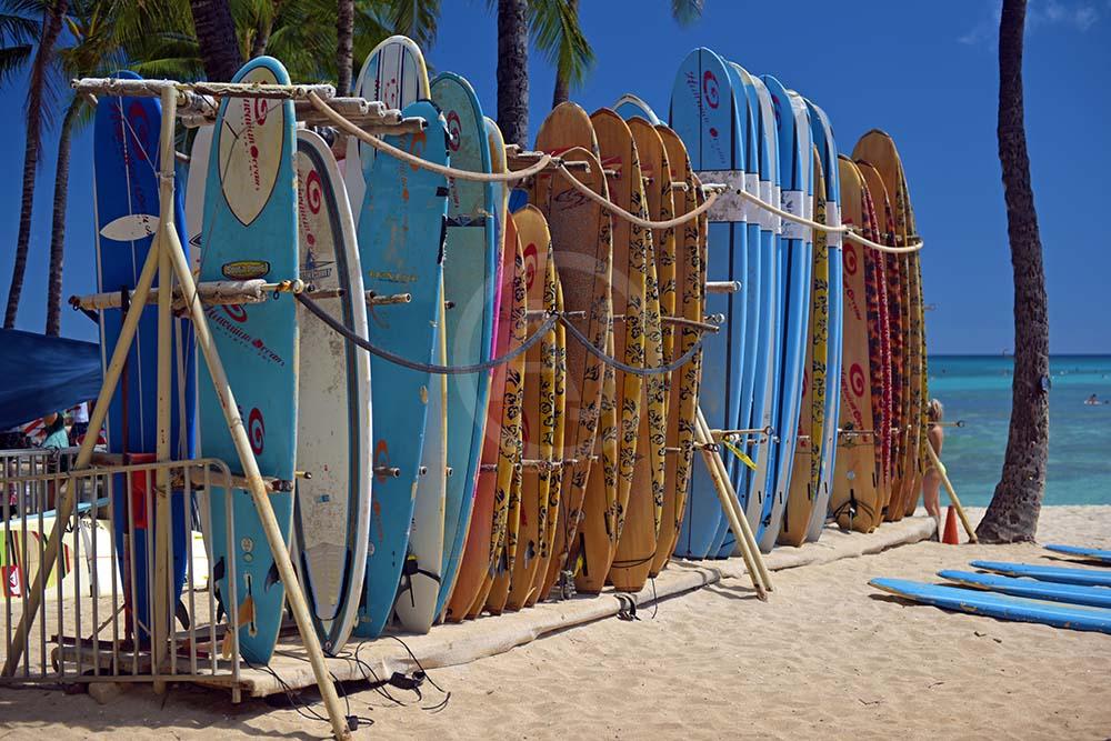 <i>Waikiki<i>